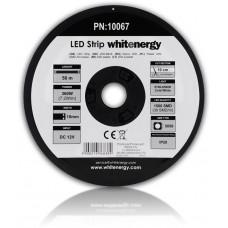 WHITENERGY WE LED páska 50m SMD5050 7.2W/m 10mm studená bílá