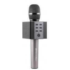 Technaxx ELEGANCE bluetooth karaoke mikrofon, 2x5W repro, černá (BT-X45)