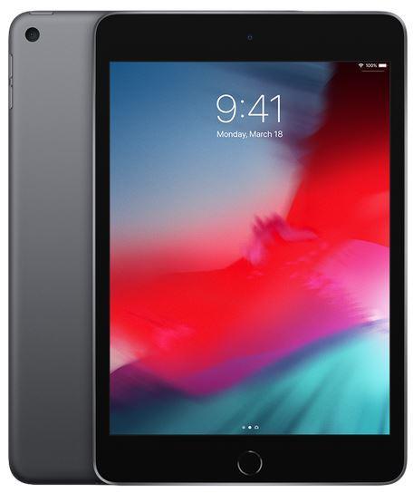 Fotografie APPLE iPad mini Wi-Fi 256GB - Space Grey (MUU32FD/A)